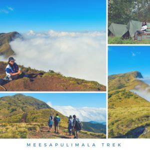 Meesapulimala Trek Nature walkers from chennai