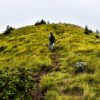 Trekking Tours in India